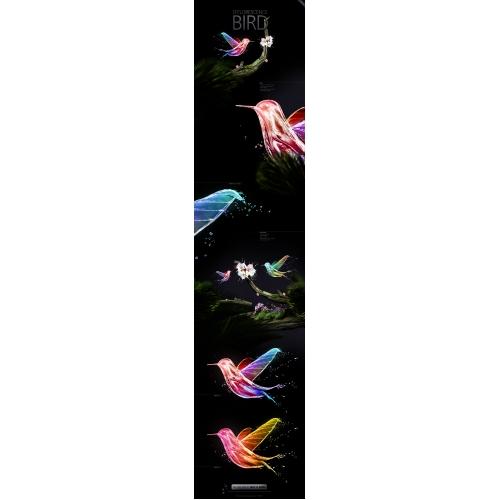 Efflorescence Bird // Digital illustration